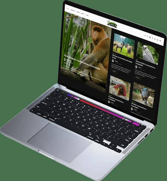 Servicios Sitios Web Blog de Growuz